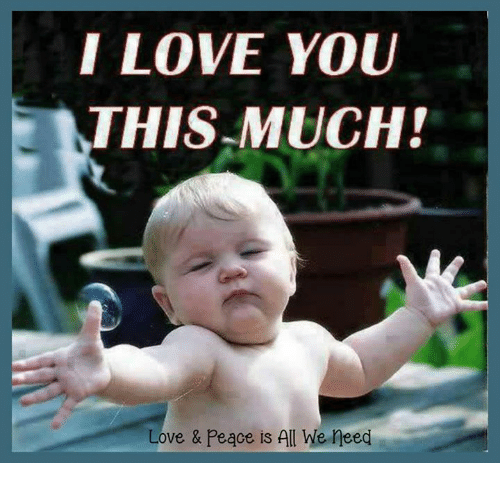 I Love You Meme: I LOVE YOU THIS MUCH! Love & Peace Is All We Need