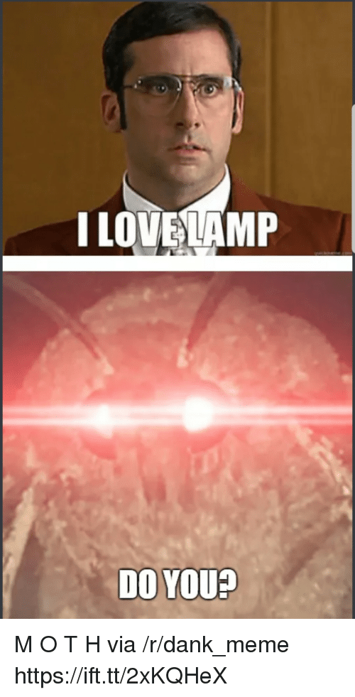 Dank Meme: I LOVELAMP  DO YOU? M O T H via /r/dank_meme https://ift.tt/2xKQHeX