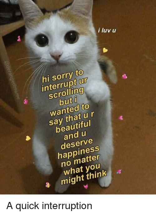 Beautiful, Sorry, and Happiness: i luv u  hi sorry to  interrupt ur  scrolling  but i  wanted to  say that ur  beautiful  and u  deserve  happiness  no matter  what you  a might think a A quick interruption