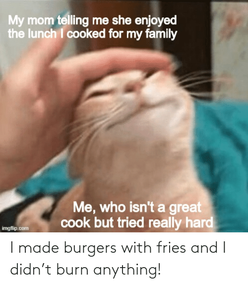 anything: I made burgers with fries and I didn't burn anything!