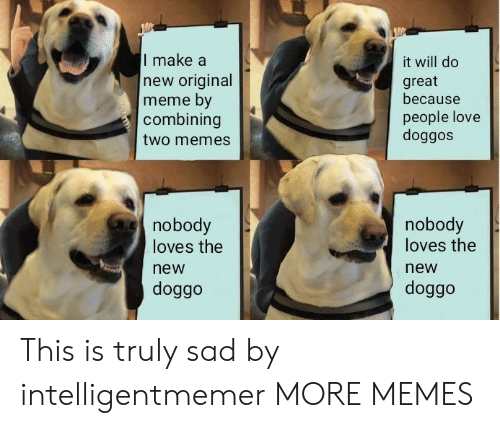 Original Meme: I make a  new original  meme by  combining  two memes  it will do  great  because  people love  doggos  nobody  loves the  new  doggo  nobody  loves the  new  doggo This is truly sad by intelligentmemer MORE MEMES