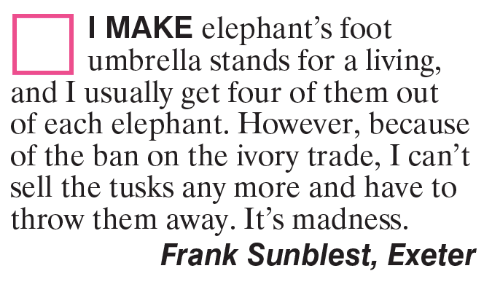 throw them away: I MAKE elephant's foot  umbrella stands for a living,  and I usually get four of them out  of each elephant. However, because  of the ban on the ivory trade, I can't  sell the tusks any more and have to  throw them away. It's madness.  Frank Sunblest, Exeter