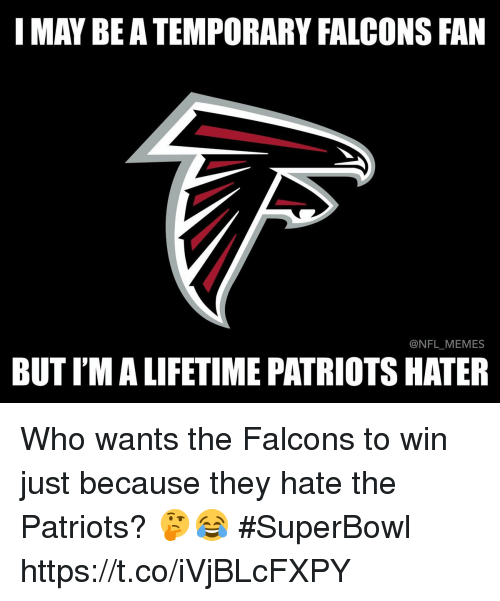 Falcons Fan: I MAY BE A TEMPORARY FALCONS FAN  NFL MEMES  BUTIMALIFETIME PATRIOTS HATER Who wants the Falcons to win just because they hate the Patriots? 🤔😂 #SuperBowl https://t.co/iVjBLcFXPY