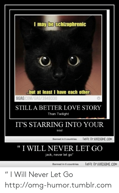 """Still a Better Love Story than Twilight : I may be schizophrenic  but at least I have each other.  9GAG.COM/GAG/3949330  STILL A BETTER LOVE STORY  Than Twilight  IT'S STARRING INTO YOUR  soul  TASTE OFAWESOME.COM  Banned in 0 countries  """"I WILL NEVER LET GO  jack, never let go""""  TASTE OF AWESOME.COM  Banned in 0 countries """" I Will Never Let Go http://omg-humor.tumblr.com"""