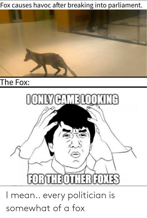 politician: I mean.. every politician is somewhat of a fox