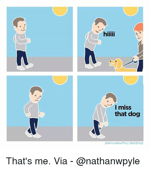 Memes, Buzzfeed, and 🤖: I miss  that dog  NATHANWPYLE/BUZZFEED That's me. Via - @nathanwpyle