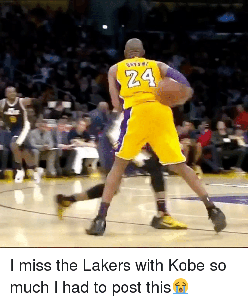 Los Angeles Lakers, Memes, and Kobe: I miss the Lakers with Kobe so much I had to post this😭