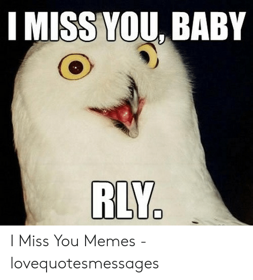 i miss you meme: I MISS YOU BABY  RLY. I Miss You Memes - lovequotesmessages