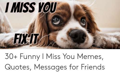 🔥 25+ Best Memes About I Miss You Memes for Him | I Miss