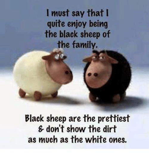black sheep: I must say that I  quite enjoy being  the black sheep of  the family.  Black sheep are the prettiest  & don't show the dirt  as much as the white ones
