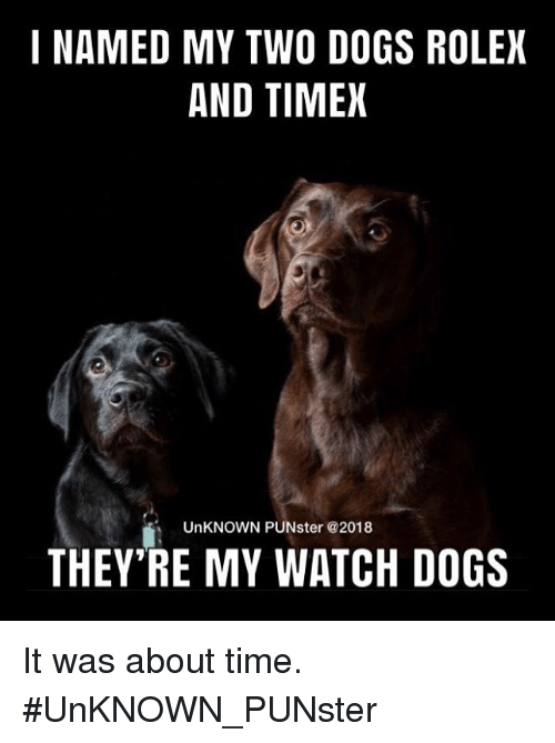 about time: I NAMED MY TWO DOGS ROLEX  AND TIMEX  UnKNOWN PUNster @2018  THEY RE MY WATCH DOGS It was about time. #UnKNOWN_PUNster