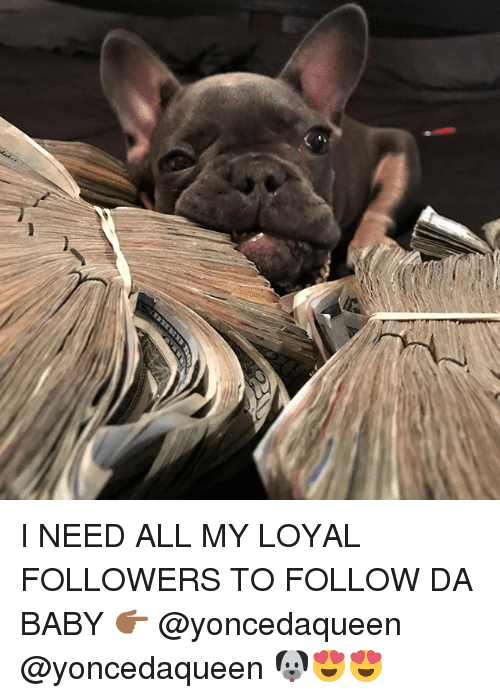 Memes, Baby, and 🤖: I NEED ALL MY LOYAL FOLLOWERS TO FOLLOW DA BABY 👉🏾 @yoncedaqueen @yoncedaqueen 🐶😍😍