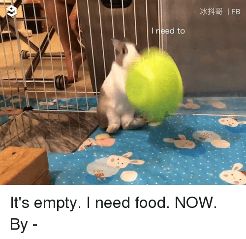 Need Food: I need to It's empty. I need food. NOW.  By 麻糬的華麗冒險-冰抖哥