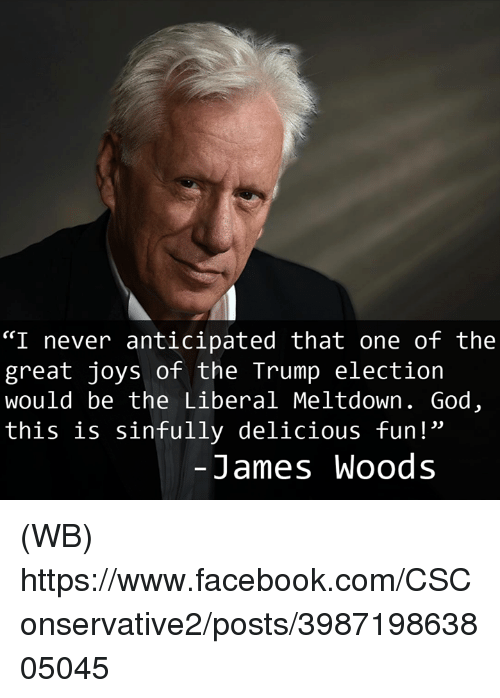 """Facebook, God, and Memes: """"I never anticipated that one of the  great joys of the Trump election  would be the Liberal Meltdown. God  this is sinfully delicious fun!""""  James Woods (WB)  https://www.facebook.com/CSConservative2/posts/398719863805045"""