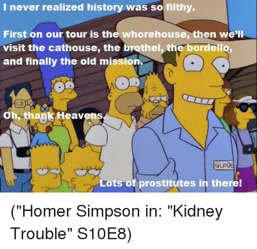 """prostitutes: I never realized history was so filthy.  First on our tour is the whorehouse, then we'll  visit the cathouse, the brothel, the bordello,  and finally the old mission  Oh, thank Heavens  GUI  ts of prostitutes in there! (""""Homer Simpson in: """"Kidney Trouble"""" S10E8)"""
