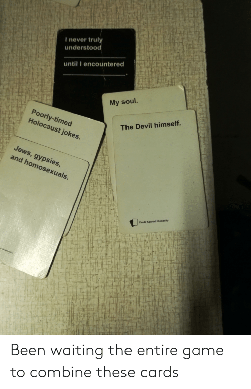 holocaust jokes: I never trul  understood  until I encountered  My soul.  Poorly-timed  Holocaust jokes.  The Devil himself.  Jews  and homosexuals.  , gypsies  Cards Against Humanity  lT  if Been waiting the entire game to combine these cards