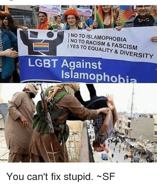 Lgbt, Memes, and Racism: I NO TO ISLAMOPHOBIA  | NO TO RACISM & FASCISM  | YE  S TO EQUALITY & DIVERSITY  LGBT Against  Islamophobia You can't fix stupid. ~SF