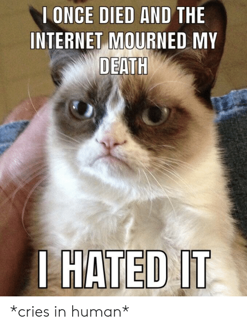 Hated It: I ONCE DIED AND THE  INTERNET MOURNED MY  DEATH  HATED  IT *cries in human*