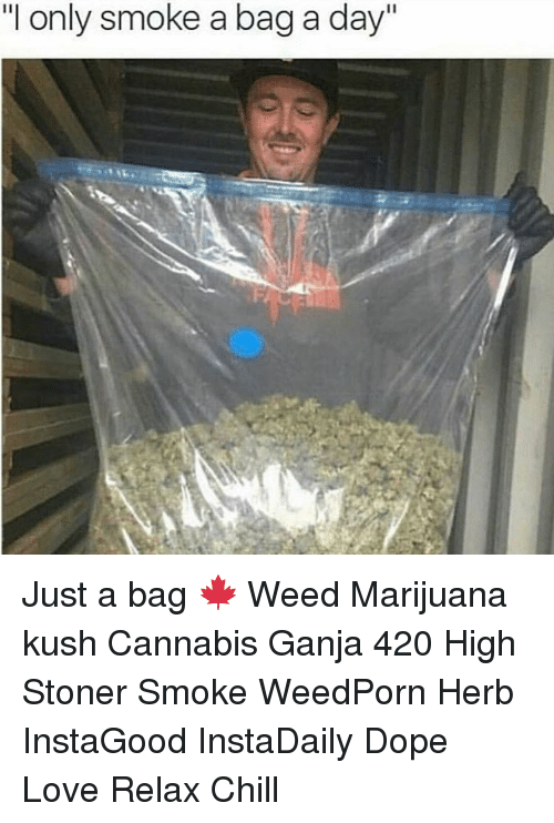 """Cannabies: """"I only smoke a bag a day"""" Just a bag 🍁 Weed Marijuana kush Cannabis Ganja 420 High Stoner Smoke WeedPorn Herb InstaGood InstaDaily Dope Love Relax Chill"""