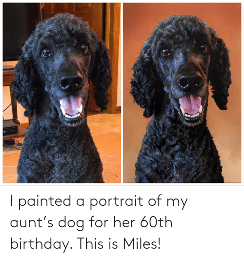 60th birthday: I painted a portrait of my aunt's dog for her 60th birthday. This is Miles!