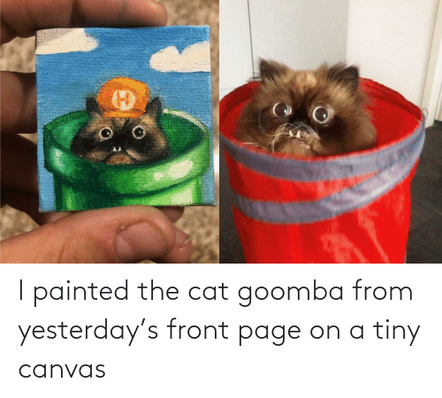 Front: I painted the cat goomba from yesterday's front page on a tiny canvas