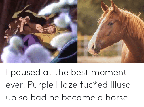 Horse: I paused at the best moment ever. Purple Haze fuc*ed Illuso up so bad he became a horse