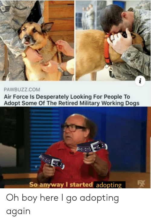 oh boy: i  PAWBUZZ.COM  Air Force Is Desperately Looking For People To  Adopt Some Of The Retired Military Working Dogs  So anyway I started adopting Oh boy here I go adopting again