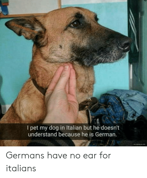 italians: I pet my dog in Italian but he doesn't  understand because he is German Germans have no ear for italians