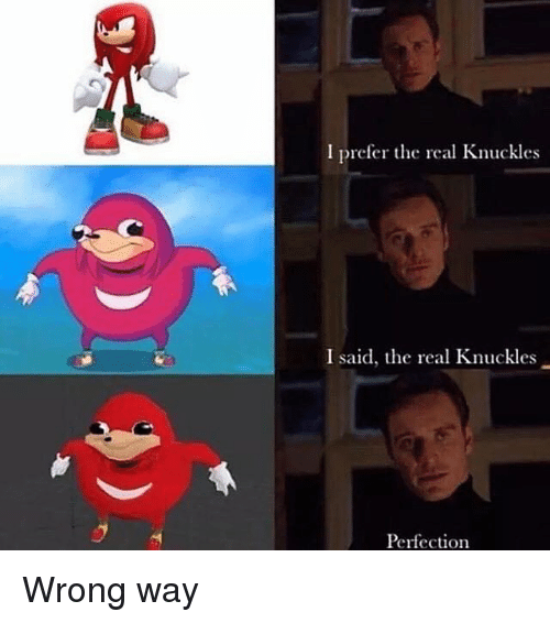 Memes, The Real, and 🤖: I prefer te real Knuckles  I said, the real Knuckles  Perfection Wrong way