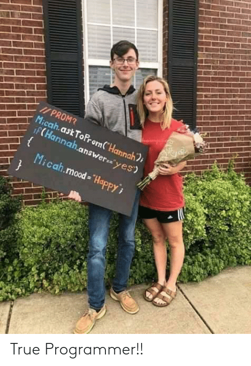 "hannah: I/ PROM?  Micah.ask ToProm(""Hannah);  iF(Hannah.answer=""yes)  Micah.mood = ""HapPPY True Programmer!!"