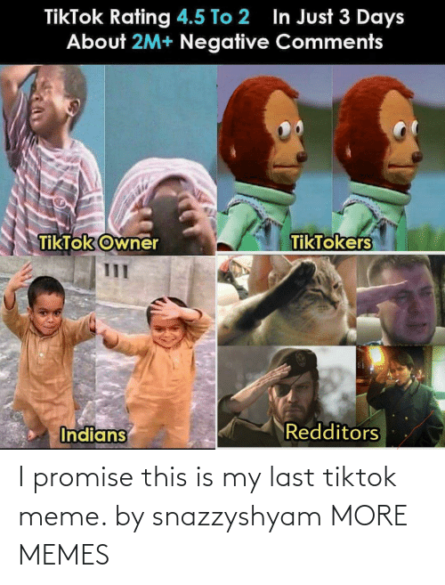 promise: I promise this is my last tiktok meme. by snazzyshyam MORE MEMES