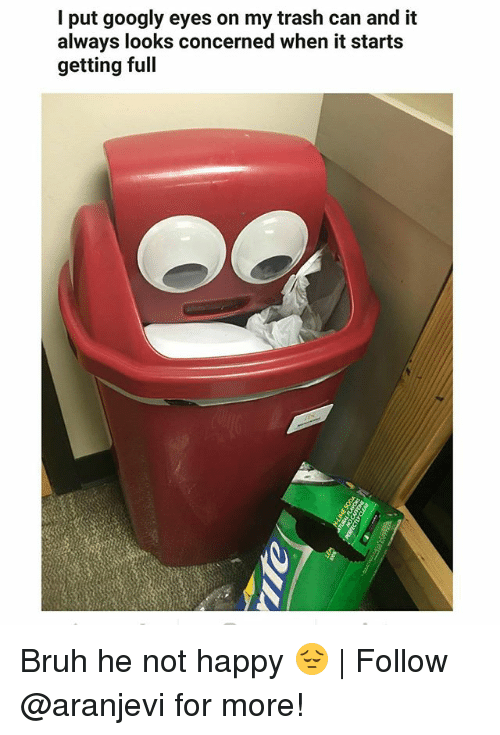 Bruh, Memes, and Trash: I put googly eyes on my trash can and it  always looks concerned when it starts  getting full Bruh he not happy 😔 | Follow @aranjevi for more!
