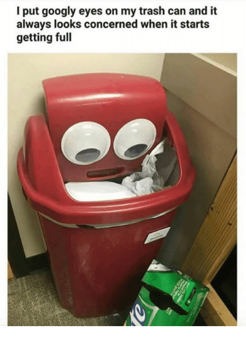 I Put Googly Eyes On My Trash Can And It Always Looks
