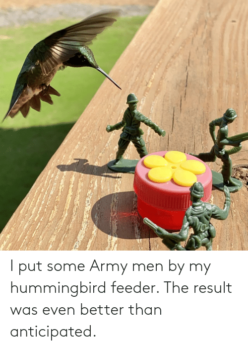 Army, Hummingbird, and Army Men: I put some Army men by my hummingbird feeder. The result was even better than anticipated.