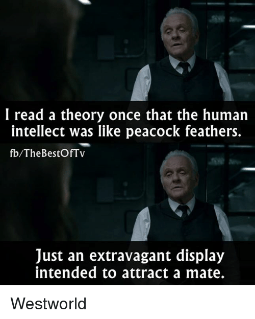 Westworld: I read a theory once that the human  intellect was like peacock feathers.  fb/The BestOfTv  Just an extravagant display  intended to attract a mate. Westworld