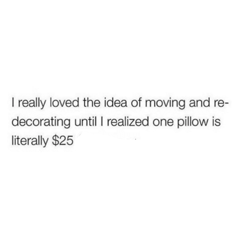 decorating: I really loved the idea of moving and re  decorating until I realized one pillow is  literally $25