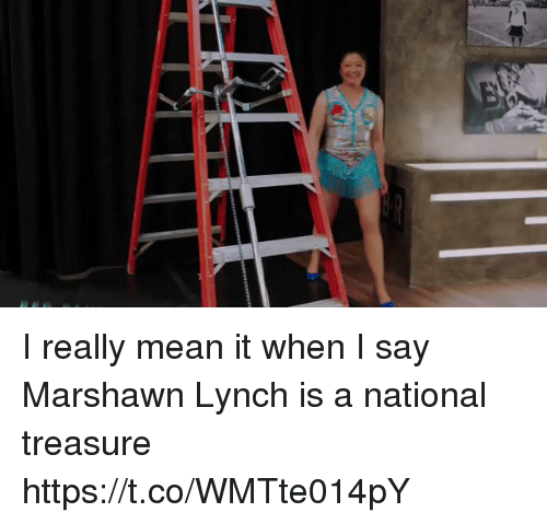 Funny, Marshawn Lynch, and Mean: I really mean it when I say Marshawn Lynch is a national treasure https://t.co/WMTte014pY