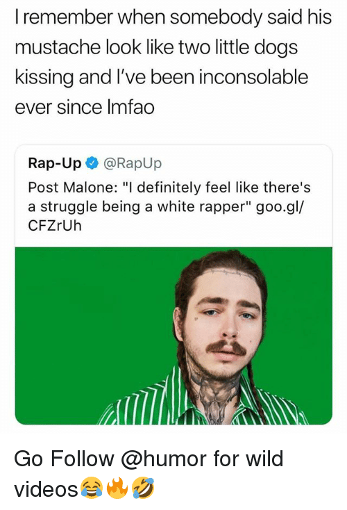 """Definitely, Post Malone, and Rap: I remember when somebody said his  mustache look like two little dog:s  kissing and I've been inconsolable  ever since Imfao  Rap-Up @RapUp  Post Malone: """"I definitely feel like there's  a struggle being a white rapper"""" goo.gl/  CFZrUh Go Follow @humor for wild videos😂🔥🤣"""