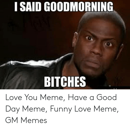 I Said Good Day Meme: I SAID GOODMORNING  BITCHES Love You Meme, Have a Good Day Meme, Funny Love Meme, GM Memes