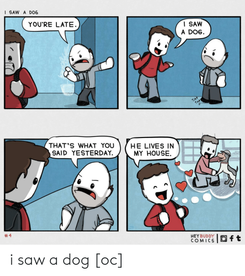 tap: I SAW A D06  YOU'RE LATE  I SAW  A DOG  TAP  TAP  THAT'S WHAT YOU  SAID YESTERDAY.  HE LIVES IN  MY HOUSE  #4  HEY BUDDY  COMICS  ft i saw a dog [oc]