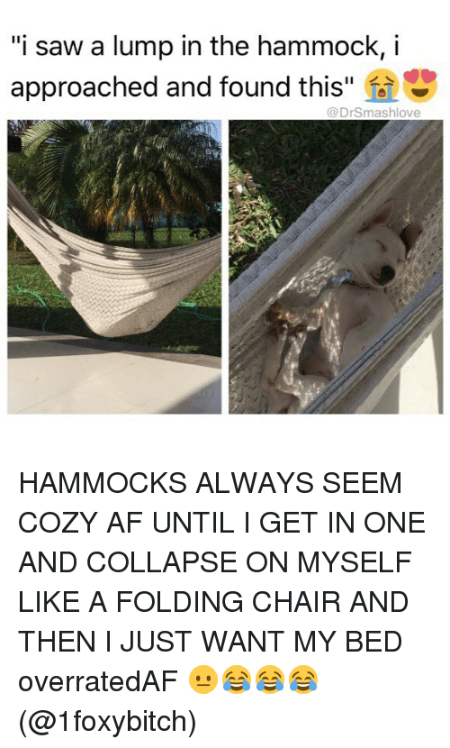 """Af, Memes, and Saw: """"i saw a lump in the hammock, i  approached and found this  @DrSmashlove HAMMOCKS ALWAYS SEEM COZY AF UNTIL I GET IN ONE AND COLLAPSE ON MYSELF LIKE A FOLDING CHAIR AND THEN I JUST WANT MY BED overratedAF 😐😂😂😂 (@1foxybitch)"""