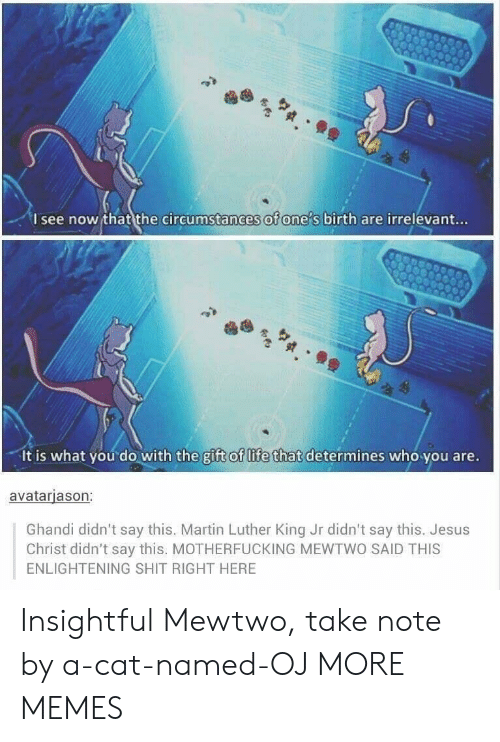 Mewtwo: I see now that the circumstances of one s birth are irrelevant...  It is what you do with the gift of life that determines who you are.  avatarjason:  Ghandi didn't say this. Martin Luther King Jr didn't say this. Jesus  Christ didn't say this. MOTHERFUCKING MEWTWO SAID THIS  ENLIGHTENING SHIT RIGHT HERE Insightful Mewtwo, take note by a-cat-named-OJ MORE MEMES