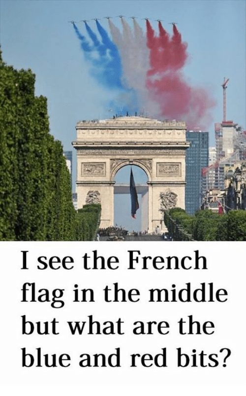 french flag: I see the French  flag in the middle  but what are the  blue and red bits?