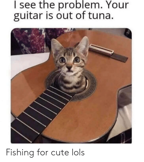 tuna: I see the problem. Your  guitar is out of tuna. Fishing for cute lols