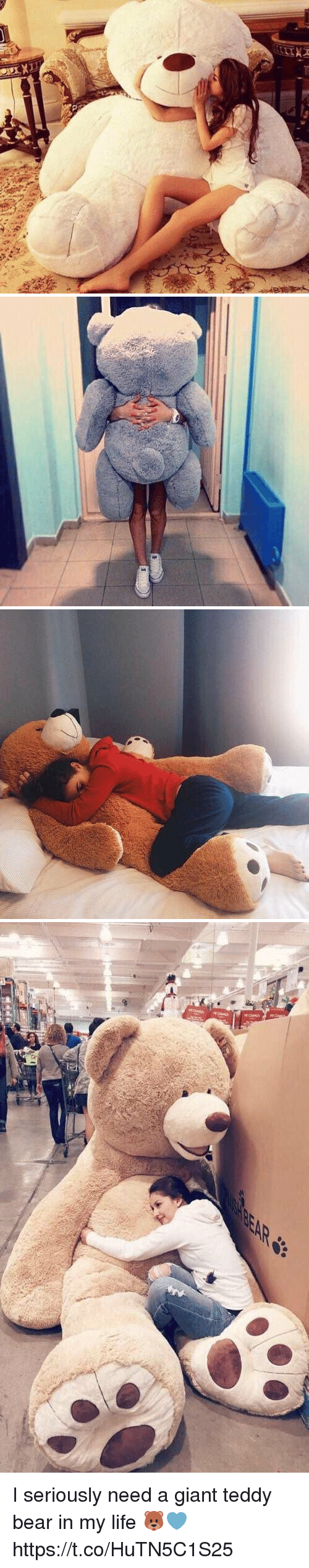 Life, Bear, and Giant: I seriously need a giant teddy bear in my life 🐻💙 https://t.co/HuTN5C1S25