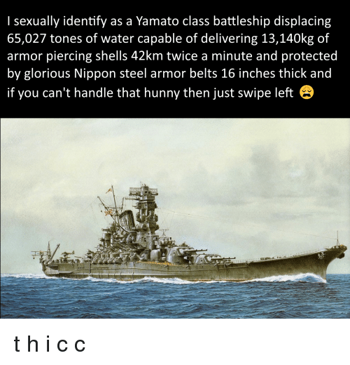 Glorious Nippon Steel: I sexually identify as a Yamato class battleship displacing  65,027 tones of water capable of delivering 13,140kg of  armor piercing shells 42km twice a minute and protected  by glorious Nippon steel armor belts 16 inches thick and  if you can't handle that hunny then just swipe left t h i c c