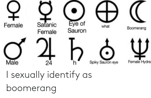 Sexually: I sexually identify as boomerang