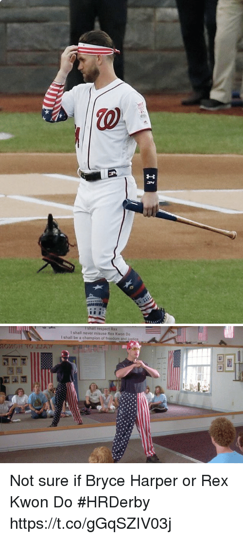 Memes, Respect, and Bryce Harper: I shall respect Rex  I shall never misuse Rex Kwon Do  I shall be a champion of freedom and justice Not sure if Bryce Harper or Rex Kwon Do #HRDerby https://t.co/gGqSZIV03j