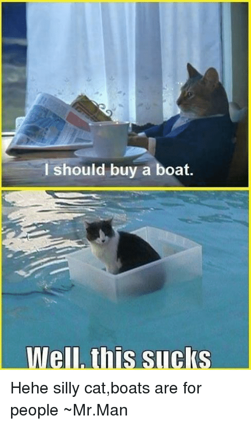 I Should Buy A Boat Well This Sucks Hehe Silly Catboats