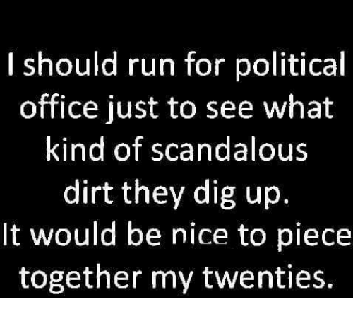 Dank, Politics, and Run: I should run for political  office just to see what  kind of scandalous  dirt they dig up.  It would be nice to piece  together my twenties.